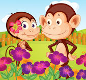 Two monkeys at the garden in the hilltop — Stock Vector