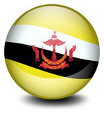A soccer ball with the flag of Brunei — Stock Vector