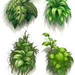 Leafy plants — Stock Vector #43064371