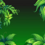 Green leafy plants — Stock Vector #43066175