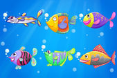 An ocean with six colorful fishes — Stock Vector