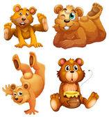 Four playful brown bears — Stock Vector