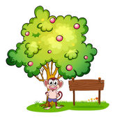 A monkey under the tree beside the empty wooden board — Stock Vector