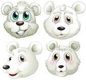 Heads of polar bears — Stock Vector