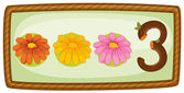 A frame with three flowers — Stock Vector