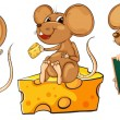 Three playful mice — Stock Vector