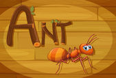 A wooden frame with an ant — Stock Vector