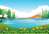 A beautiful pic of nature — Stock Vector