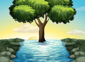 A big tree in the middle of the river — Stock Vector