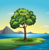 A tree near the ocean — Vector de stock