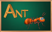A blackboard with an ant — Stock Vector