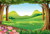 A green forest — Stock Vector