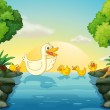 Ducks at the river — Stock Vector #45564069