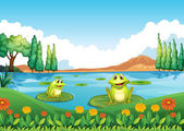 Two playful frogs at the pond — Stock Vector