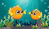Two puffer fishes under the sea — Stock Vector