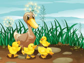 A duck and her ducklings near the grassland — Stock Vector