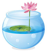An aquarium with a waterlily and a flower — Stock Vector