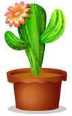 A cactus plant with a flower — Vetorial Stock