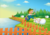 A boy feeding the sheeps — Stock Vector