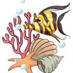 ������, ������: A stripe colored fish under the sea