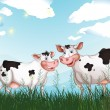 Постер, плакат: Two cows at the grassland