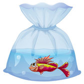 A plastic pouch with a fish — Stock Vector