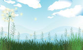 Tall grasses under the blue sky — Stock Vector