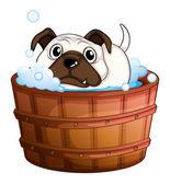 Küvet içinde bir bulldog — Stok Vektör