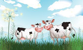 Two cows at the grassland — Stock Vector