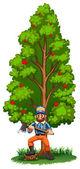 A lumberjack under the tall tree — Stock Vector