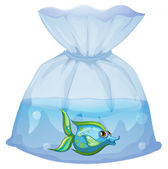 A blue fish inside the plastic pouch — Stock Vector