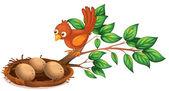 A bird watching the eggs — Stock Vector