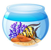 A fish inside the jar — Stock Vector