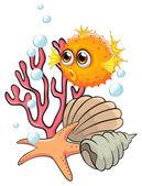 An orange puffer fish near the seashells — Stock Vector