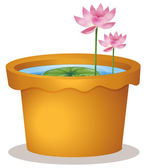 A pot with a waterlily and lotus flowers — Stock Vector