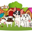A group of dogs outside their houses — Stock Vector