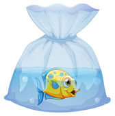 A fish inside the plastic pouch — Stock Vector