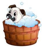 A cute bulldog inside the bathtub — Stock Vector