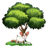 Dog under Tree — Vetorial Stock