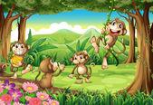 Monkeys playing — Stock Vector
