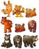 Cute bear movements — Vector de stock