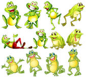 Set of frogs — Stock Vector