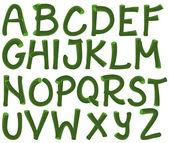 Groene alfabet — Stockvector