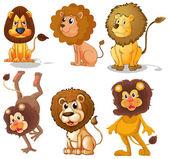 львы — Cтоковый вектор