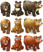 Collection of bears — Stock Vector