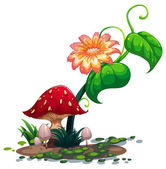 A flowering plant and mushrooms — Stock Vector