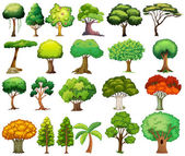 Set of trees — Stock Vector