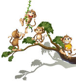 A tree with four monkeys — Stock Vector