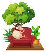 Hedgehog on Sofa — Stock Vector