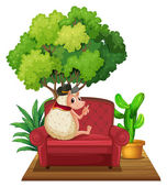 Hedgehog on Sofa — Stock Vector